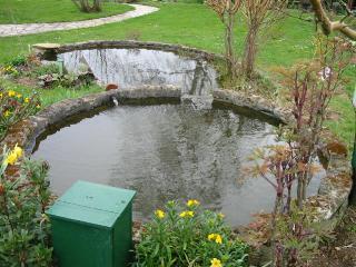 Nettoyage du bassin au jardin au printemps for Nettoyage jardin printemps