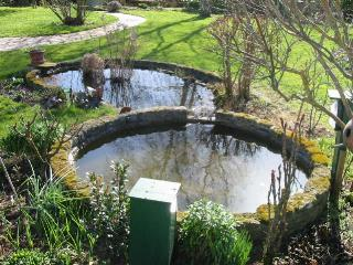 nettoyage du bassin au jardin au printemps